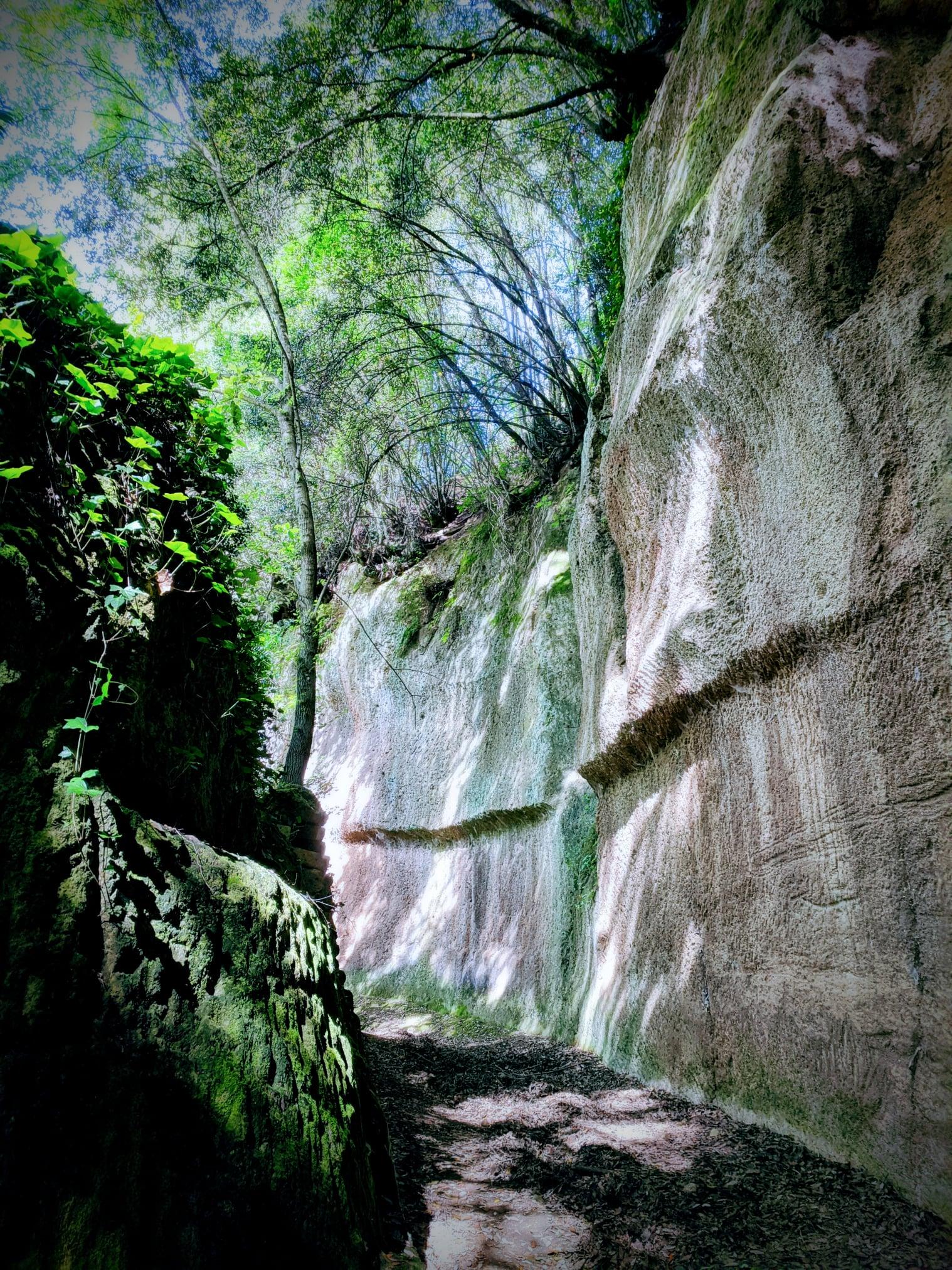 Vie Cave Etrusche TaniaMasi